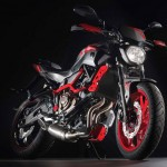 2015 Yamaha MT-07 Moto Cage Detail_13