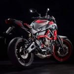 2015 Yamaha MT-07 Moto Cage Detail_14