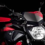 2015 Yamaha MT-07 Moto Cage Detail_7