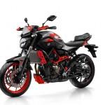 2015 Yamaha MT-07 Moto Cage Front Left Side