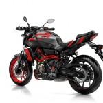 2015 Yamaha MT-07 Moto Cage Rear Left Side