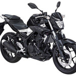 2015 Yamaha MT-25 Black Strike