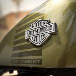 2016 Harley-Davidson Forty-Eight Logo