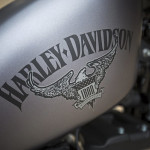 2016 Harley-Davidson Iron 883 Logo