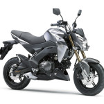 2016 Kawasaki Z125 Metalic Graphite Gray